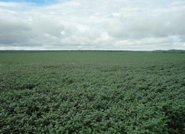 Fazendas que eram de Silval, avaliadas em R$ 23 mi, podem acabar sendo assentadas se não receberem lances